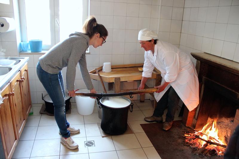 La caldaia viene delicatamente spostata per l'aggiunta del caglio.