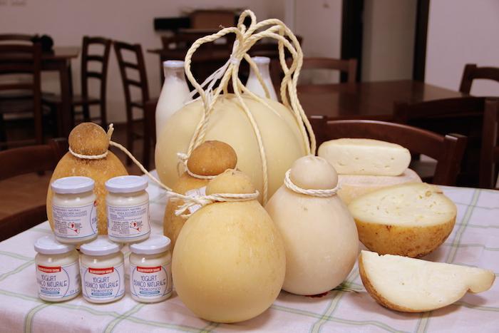Yogurt, caciocavalli di varia stagionatura, caciotta stracchinata, caciocchiato e, al centro, un caciocavallo da 10 kg